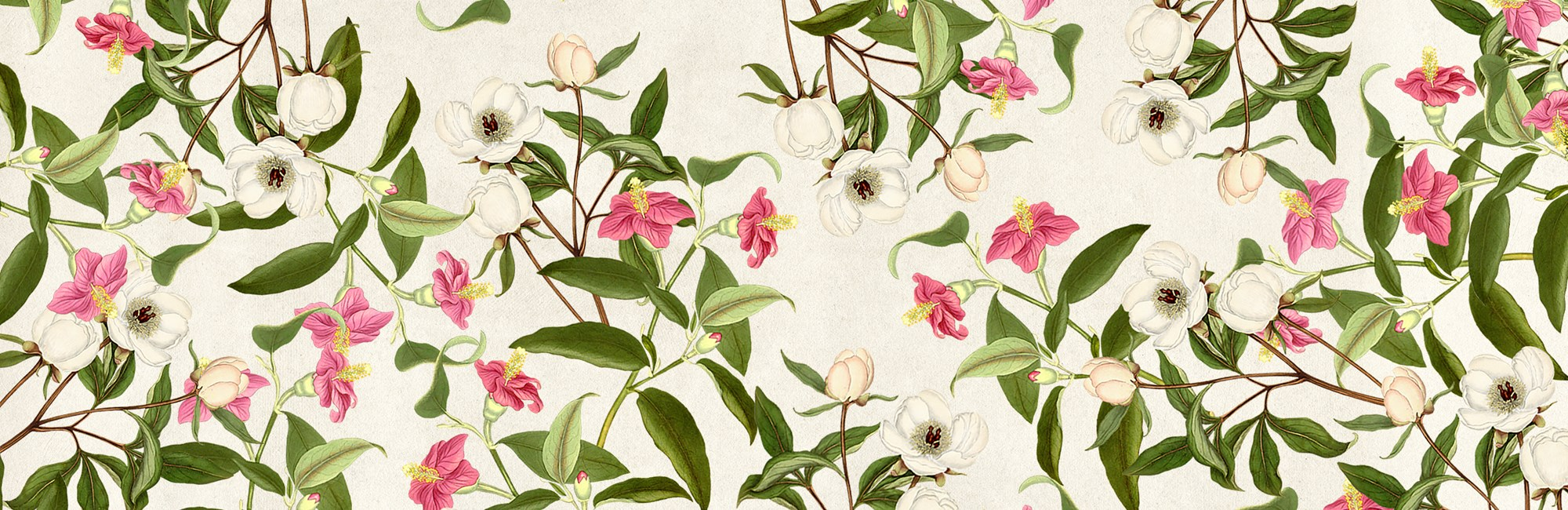 hs banner 2500x1500 floral background 1